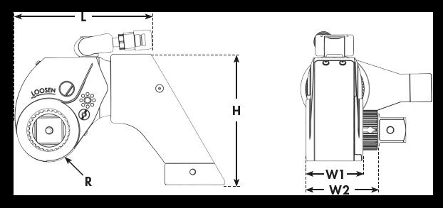 DIMS MXT+ - transparent
